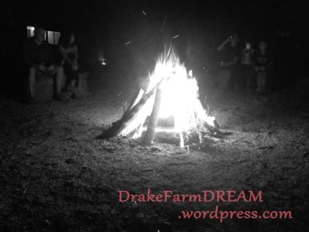 bonfire b_w